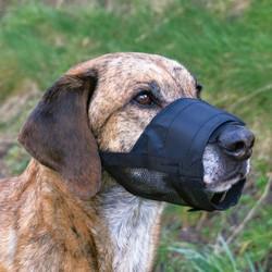 Trixie Köpek Fileli Ağızlık S, Burun Çevre 14-18cm - Thumbnail