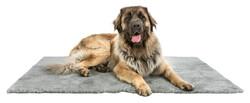 Trixie - Trixie Köpek Hijyenik Yatak, 150x100cm, Gri