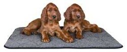 Trixie - Trixie Köpek & Kedi Isı Tutan Yatak 80 x 60 cm, Gri
