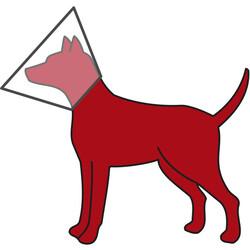 Trixie Köpek Koruyucu Yakalık L - XL: 50 - 58 cm / 28 cm - Thumbnail