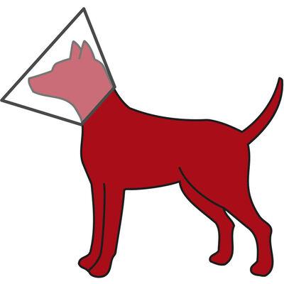Trixie Köpek Koruyucu Yakalık L - XL: 50 - 58 cm / 28 cm
