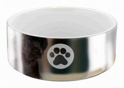 Trixie - Trixie Köpek Seramik Mama ve Su Kabı 0,3 Lt (12 Cm)
