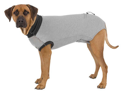 Trixie Köpek Vücut Koruyucu Elbise L - XL, 62 cm Gri