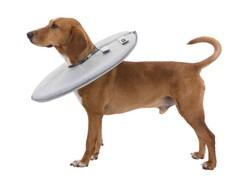 Trixie Köpek Yakalığı M / 38 - 42 Cm / 21,5 Cm Gri - Thumbnail