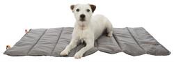 Trixie Köpek Yatağı, İnce, 100 x 65 cm, Gri Rengi - Thumbnail
