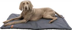 Trixie - Trixie Köpek Yatağı, Yumuşak ve İnce, 100 x 70 cm, Gri Rengi