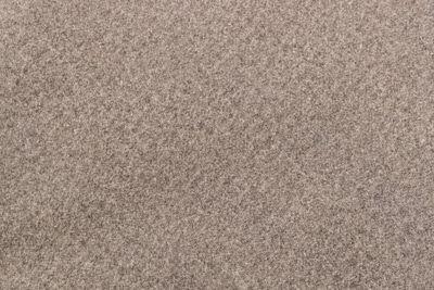 Trixie Köpek Yatağı, Yumuşak ve İnce, 100 x 70 cm, Kum Beji Rengi