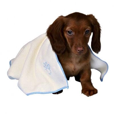 Trixie Yavru Köpek Seti, Erkek, Açık Mavi