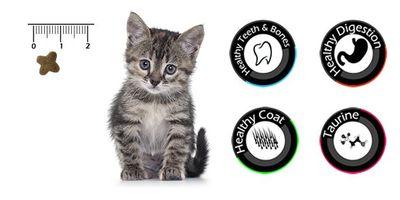 Vancat Kitten Kuzu Etli Yavru Kedi Maması 15 Kg + 10 Adet Temizlik Mendili