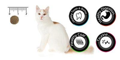 Vancat Sterilised Tavuklu Kısırlaştırılmış Yetişkin Kedi Maması 15 Kg + 10 Adet Temizlik Mendili