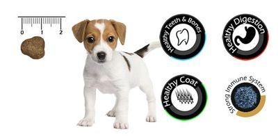 Vandog Puppy Kuzu Etli ve Pirinçli Yavru Köpek Maması 15 Kg+10 Adet Temizlik Mendili